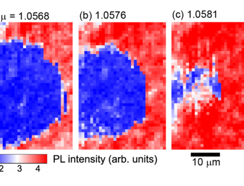A Correlated Phase of Skyrmions Observed in Real Space